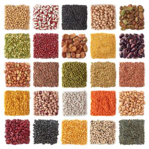 Collage with the best types of legumes