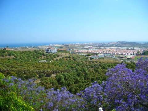 A landscape with the Mediterranean Sea as a backdrop