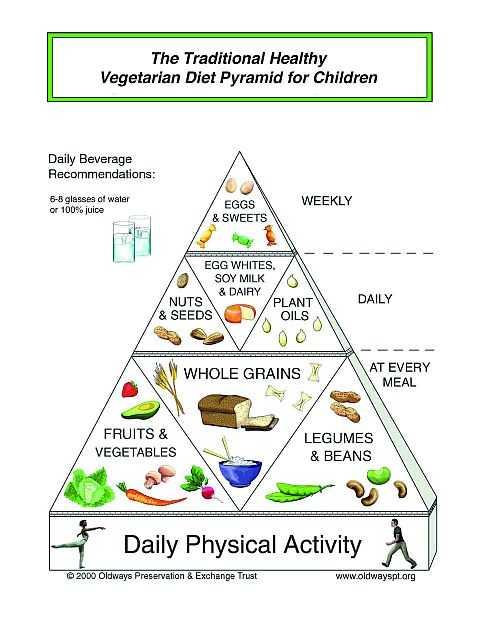 The Vegetarian Diet Pyramid for Children></p> <p><script type=