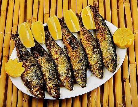 Fatty fish, sardines