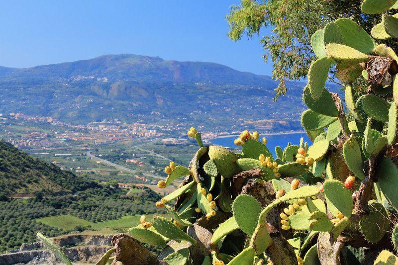 Mediterranean Diet cradle. Mediterranean landscape